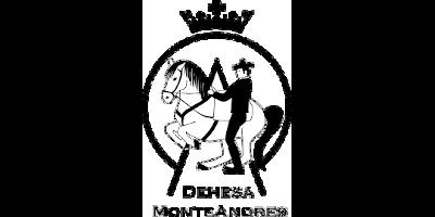 https://galopes.es/wp-content/uploads/2021/03/logo-dehesa.png