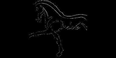 https://galopes.es/wp-content/uploads/2021/04/logo-centro-hipico-orive.png
