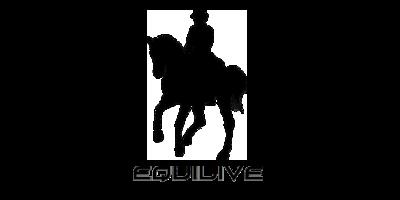 https://galopes.es/wp-content/uploads/2021/04/logo-equile-1.png