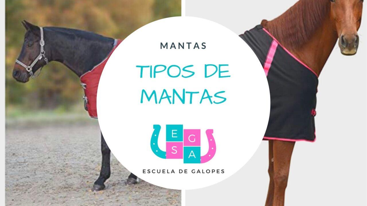 Tipos de mantas para caballos