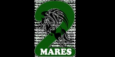 https://galopes.es/wp-content/uploads/2021/06/Logo-centro-ecuestre-2mares-1.png
